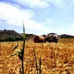 agricultura-9