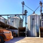 silos-cetosa-algerri